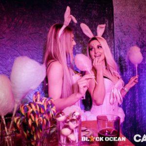 gogo Agentur Candy Konzept